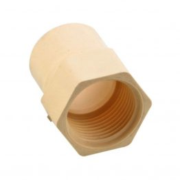 C PVC Female Adapter